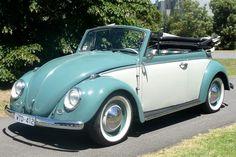 volkswagen classic cars d Cabrio Vw, Volkswagen Beetle Cabriolet, Volkswagen Bus, Vw Camper, Vw Beetle Convertible, Vw Classic, Vw Vintage, Vans, Vw Beetles
