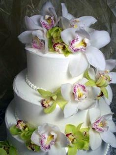 Three tier round buttercream wedding cake beautifully decorated with white and green Cymbidium Orchids