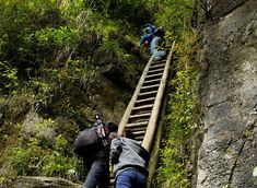 20 Of The Most Dangerous And Unusual Journeys To School In The World - Zhang Jiawan Village, Southern China Kids Going To School, Walk To School, Hate School, Schools Around The World, Kids Around The World, Around The Worlds, Philippines, Kindergarten, Voyager Loin
