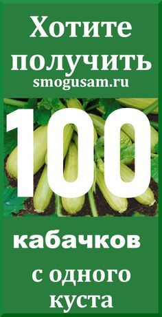 Vegetable Garden Design, Vegetables, Gardens, Vegetable Garden, Vegetable Recipes, Veggies