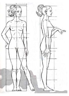 Anatomy Sketches, Body Sketches, Drawing Sketches, Art Drawings, Human Body Drawing, Female Drawing, Human Figure Drawing, Human Body Proportions, Human Anatomy Drawing