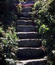11 Passos em Busca da Elevação Espiritual