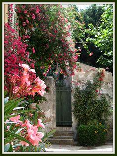 Ruelle du vieux St Tropez