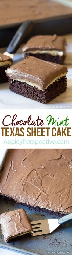 Chocolate Mint Texas Sheet Cake on ASpicyPerspective.com