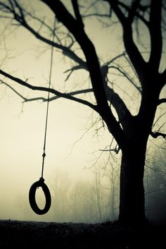 ♂ Solitude Swing tree Parker J Pfister Photographer - b&w personal