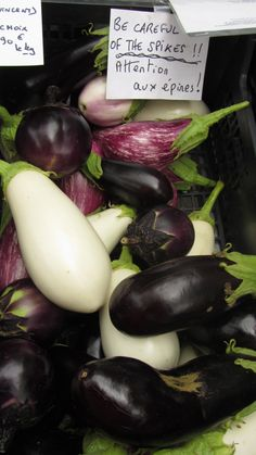 French aubergines.