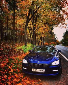 BMW F13 Autumn