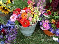 Farmers Market Glorious Bouquet Photograph