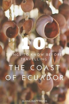 10 Things to Know Before Travelling the Coast of Ecuador