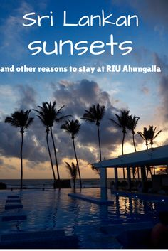 Sunsets in Sri Lanka... just one of the reasons to book your next holiday at this stunning resort in Ahungalla. See a full review on While I'm Young  travel and lifestyle blog.  Luxury beach resorts | Sri Lanka hotels | Sunset | Paradise | Golden Hour | Palm trees | Infinity pool