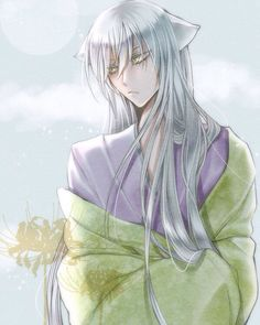 Tomoe from Kamisama kiss