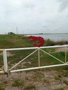 End of the road Montegut, Louisiana