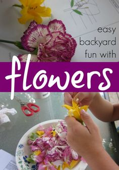 Beautiful and easy backyard science with flowers: dissecting, examining, and learning about flowers -- lots of fun too!