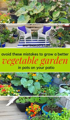 Avoid These 8 Mistakes for a Better Vegetable Container Garden Back Gardens, Outdoor Gardens, Container Gardening Vegetables, Planting Vegetables, Vegetable Gardening, Veggies, Low Maintenance Garden, Garden Edging, Small Space Gardening