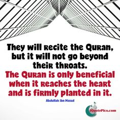 What's the purpose of the Quran? Was revealed just to be recited or has got…