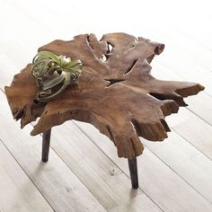 Walden Coffee Table. Whimsical. Wood. Tree Trunk. Art. More
