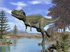 Alioramus Dinosaur - Render by Elenarts - Elena Duvernay Digital Art Jurassic Park, Prehistoric, Dinosaurs, Fine Art America, Digital Art, Lion Sculpture, Elephant, Prints, Poster