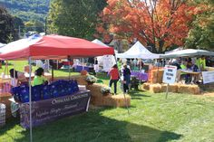 Celebrate everything grape & the beauty of fall in the Finger Lakes! The Great Naples Grape Festival! #FLX