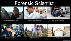 What I Really Do - Forensic Scientist