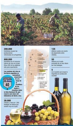 Rutas del Vino - Argentina