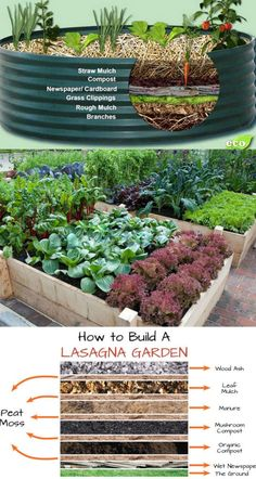 28 Best DIY raised bed gardens: easy tutorials, ideas & designs to build raised beds or vegetable & flower garden box planters with inexpensive materials! - A Piece of Rainbow backyard, landscaping, gardening tips, gardening ideas design Raised Vegetable Gardens, Veg Garden, Vegetable Garden Design, Garden Boxes, Garden Planters, Raised Gardens, Diy Garden Box, Raised Herb Garden, Vegetables Garden