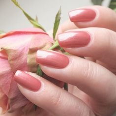 swatch CHANEL ROSE PARADISE 185