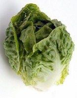Hearty romaine lettuce recipe from the food and nutrition experts