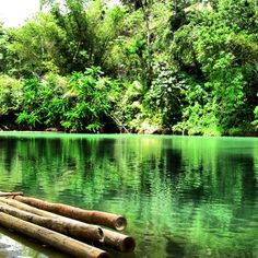 DPAD Day 2: Green  The Philippines is very rich in natural resources which made it perfect for people who loves the outdoors.  I only hope these resources lives on & be appreciated and enjoyed by the next generation.
