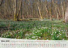 Fotokalender Thüringer Landschaften 2016, März