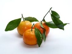 Clementine oranges are easy to grow and a treat to eat.