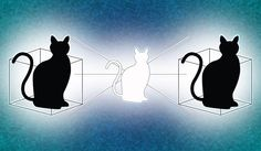 Yale physicists have given Schrödinger's famous cat a second box to play in, and the result may help further the quest for reliable quantum computing.