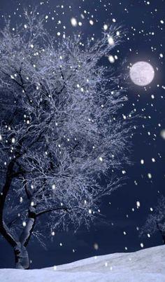 Vincent's winter sky...