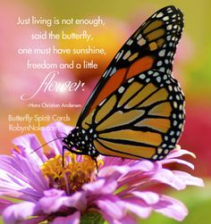 *Just living is not enough, said the butterfly, One must have Sunshine, Freedom and a little Flower...Butterfly Spirit