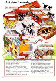 German Grammar, German Words, French Lessons, Spanish Lessons, Teaching French, Teaching Spanish, Study German, Deutsch Language, German Language Learning