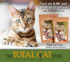 50 best homemade raw cat food how to make images on pinterest make your own homemade raw cat food in 3 simple steps with tcfeline premix visit forumfinder Choice Image