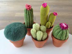 5 gehaakte cactussen