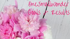 OneSmallWonder goals and results August 2016