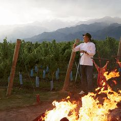 Food and Wine: A Gaucho Guide to the Land of Malbec and Grilled Meat