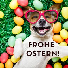 beautiful Happy Easter pictures: Easter greetings for free, cool and funny! Happy Halloween Banner, Halloween Tags, Halloween Images Free, Halloween Kunst, Happy Halloween Quotes, Happy Halloween Pictures, Halloween Chalkboard, Halloween Doodle, Halloween Greetings