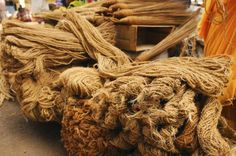 how green is it? the tale of coconut coir