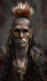 Native American on Pinterest   Iroquois, Mohawks and Native ...