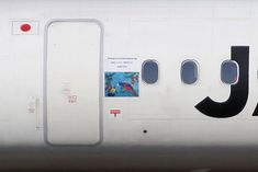 ''Amami Nature'' sticker on JA841C plane. (5th version).