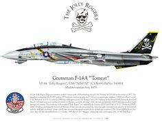 Grumman F-14 Tomcat - The Jolly Rogers Squad