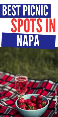 Best Picnic Spots in Napa | Wine Picnic Napa | Wine Country Picnic Spots | Wine Picnics in Napa via @aspiringwinos Wine Country, Country Picnic, Wine Cocktails, Cocktail Recipes, The Wine Club, Different Types Of Wine, Wine Education, Picnic Lunches, Picnic Spot