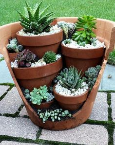 creative garden ideas and landscaping tips Thanks for watching this video! We would like to introduce garden design ideas diy garden, pots for plants, Diy c. Succulent Gardening, Succulent Pots, Cacti And Succulents, Container Gardening, Organic Gardening, Succulent Ideas, Succulents In Containers, Small Garden Ideas With Succulents, Potting Succulents Diy