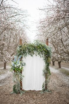 A pretty doorway in a superbly pretty almond orchard