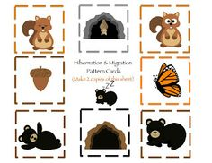 Preschool Printables: Hibernation & Migration Printable