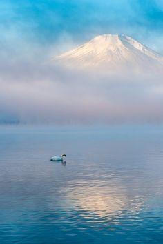~~swan lake | a peaceful misty morning at Lake Yamanaka, Japan | by Shinichiro Saka~~