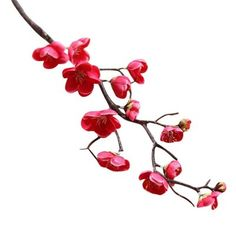 This plum-shaped artificial flower is very suitable for decorating wedding table scenes or DIY birthday gifts, garden hotel office bedroom courtyard window sills; it can be used for hanging baskets, vases, flower pots or artificial plant bonsai, etc. Can help you create a beautiful garden indoors or outdoors, you can use it to make artificial plum trees in the garden, they will be very beautiful. This artificial flower will never wither, and the fake flower can stay fresh and lifelike without yo Artificial Silk Flowers, Fake Flowers, Dried Flowers, Artificial Plants, White Flowers, Flower Branch, Flower Art, Flower Colour