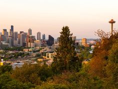 Seattle on a Budget   7 fun activities that cost less than $10